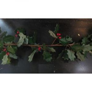 170Cm Holly Garland