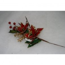Poinsettia With Berries
