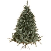Burlington Pine 150Cm