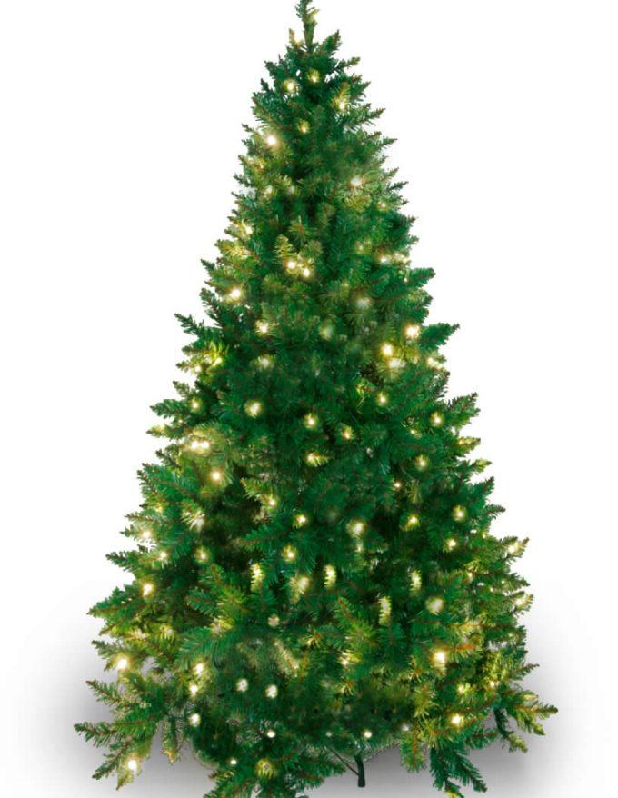#114 Imperial Pine 250 WW LED 240cm