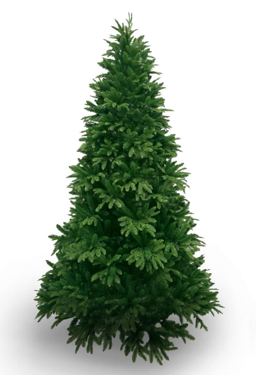 #220 Grand PE Pine 225cm
