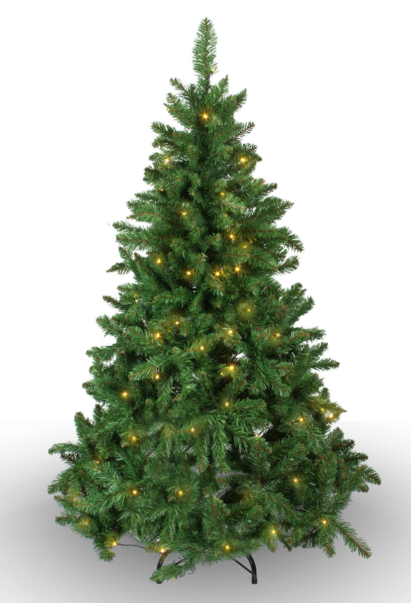 #268 Imperial Pine 100 WW LED 150cm